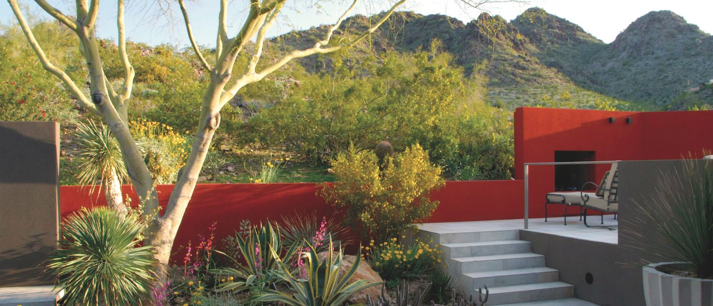 vue jardin arizona