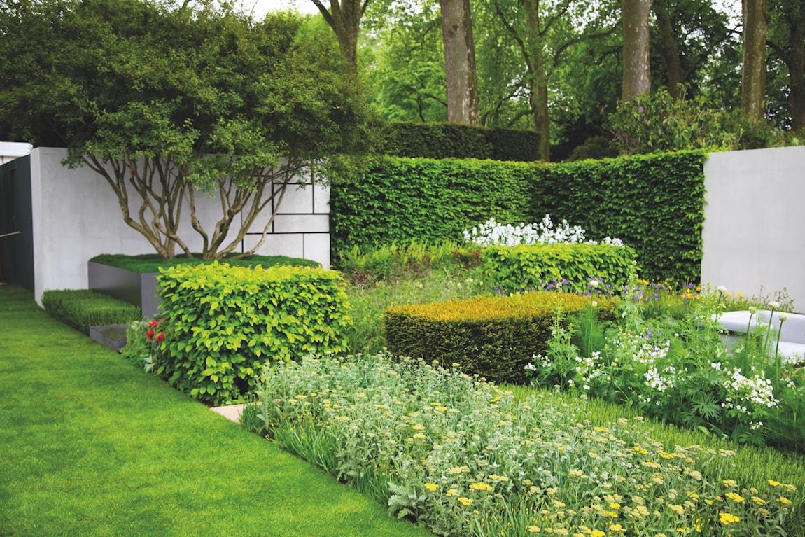 Suivez la ligne ext rieurs design for Jardin en ligne