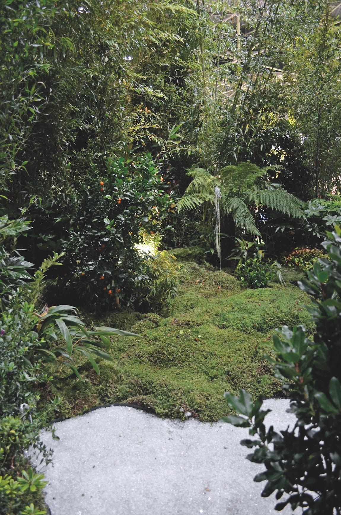 forêt avec billes de verre