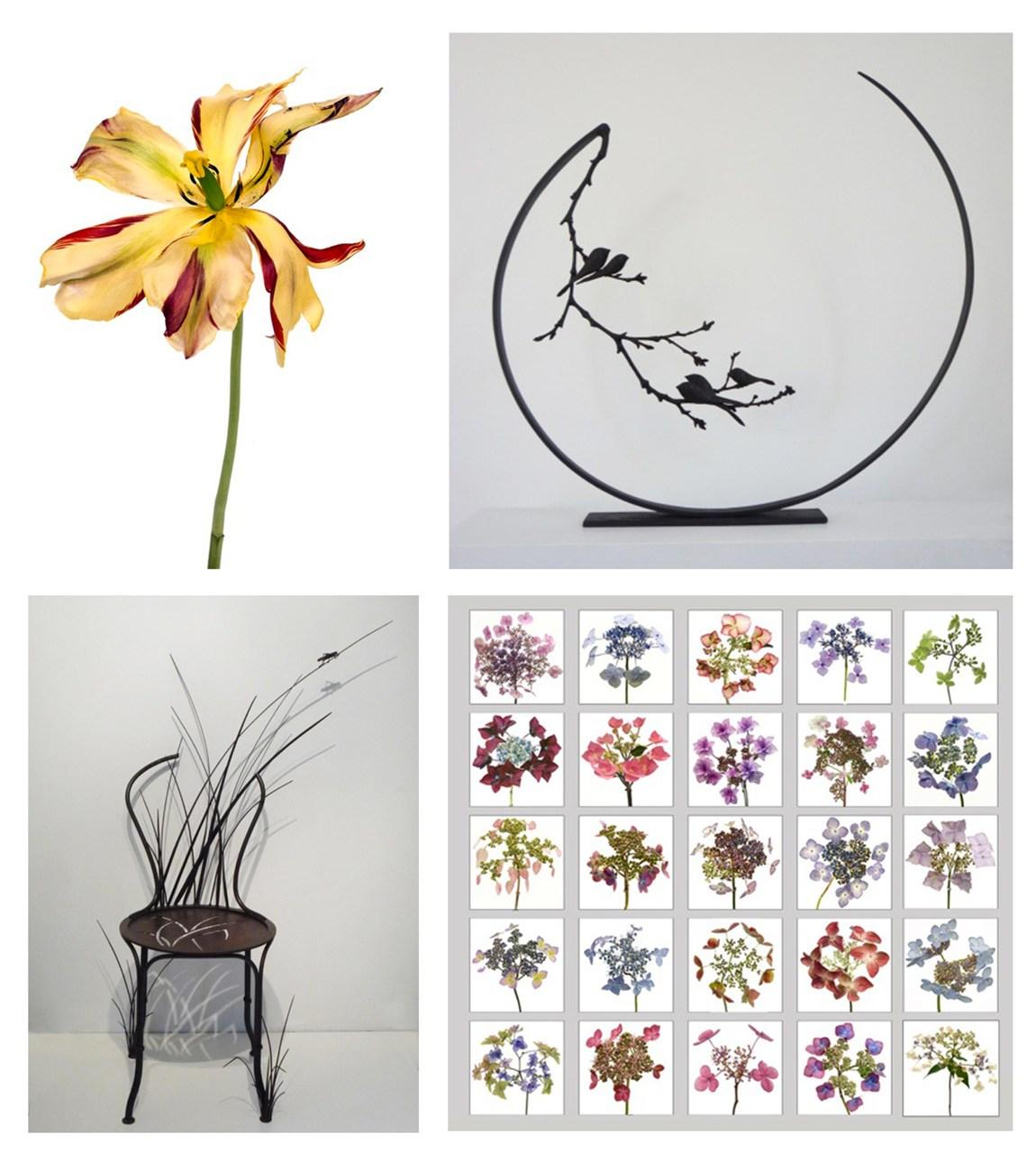 Visuels et sculptures de Rachel Levy et Anne.K Imbert pour l'exposition Botanic'Art