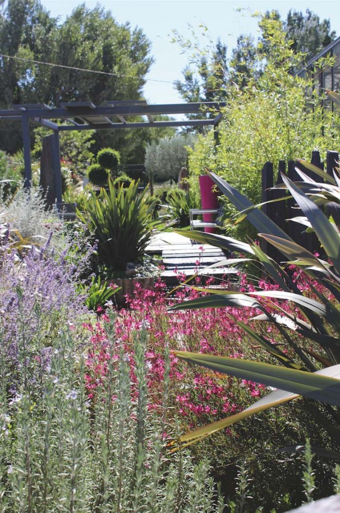 jardin ensoleillé couleur