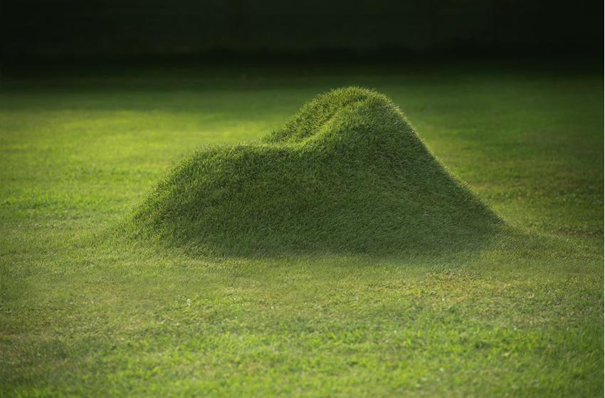 Terra Grass Armchair