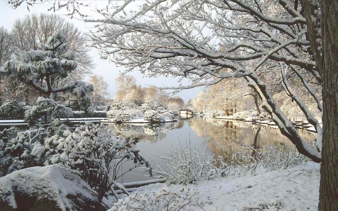Jardins en hiver Saint Louis dans le Missouri