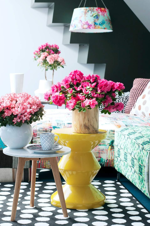 composition florale d'azalée
