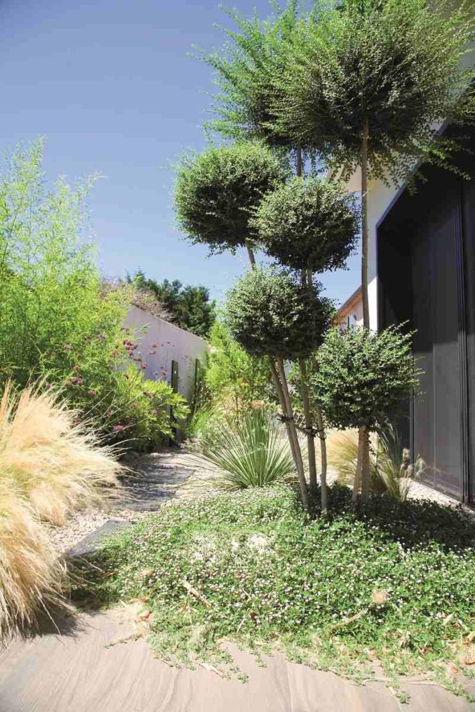 jardin urbain sylvère fournier