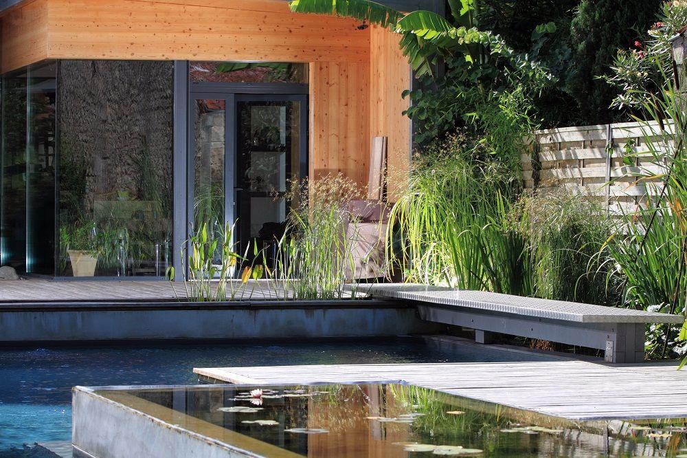 Jardin aquatique entre piscine et nature ext rieurs design for Piscine jardin aquatique