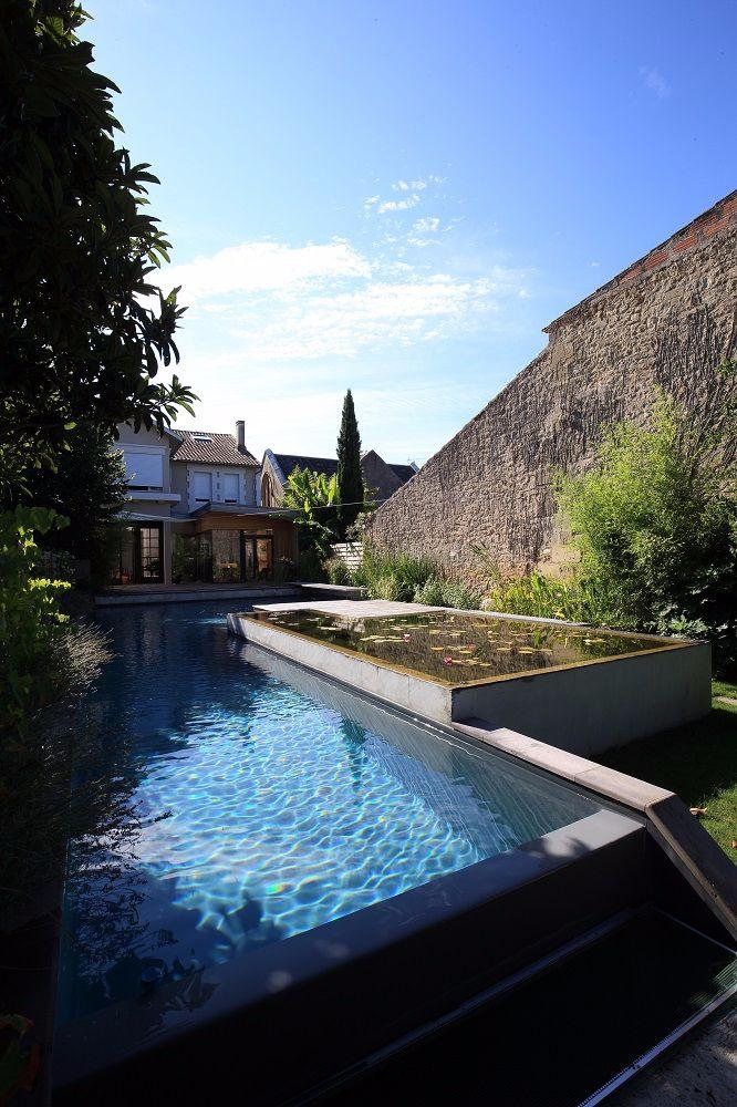 plantes bord de piscine