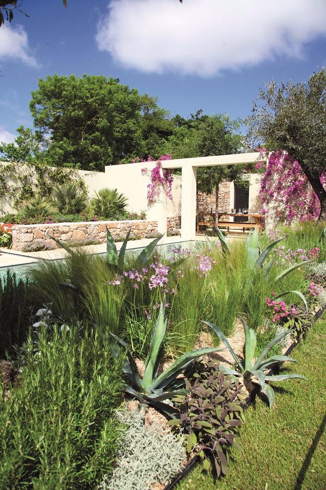 Inspiration sud am ricaine un jardin joyeux et convivial for Jardin a l americaine