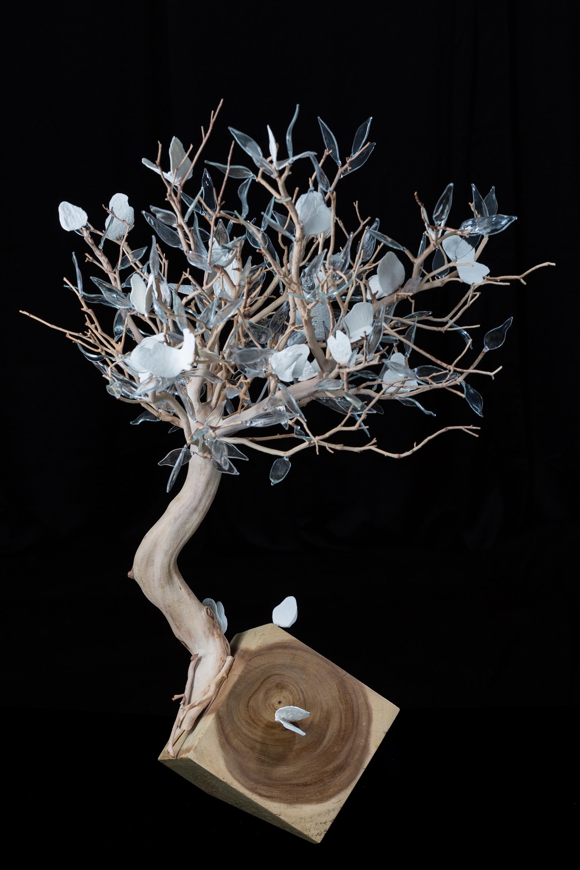 Geneviève Mathieu, L'arbre aux papillons