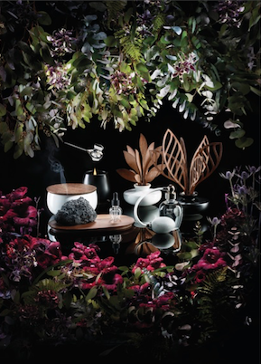 Alessi, Collection Five Seasons, création MArcel Wanders