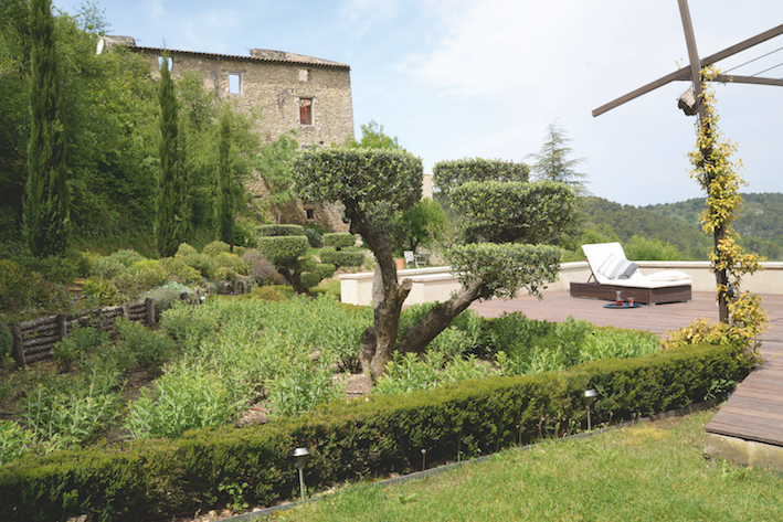 jardin-naturel-provence-paysagiste-frederic-trifilio