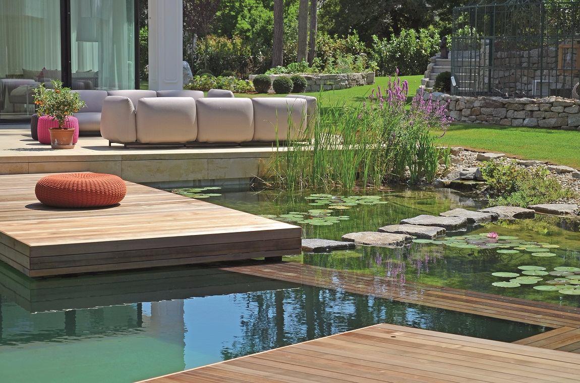 jardin piscine naturel