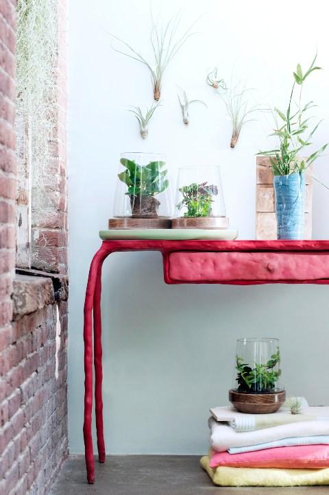 Peperomia design avec meubles et accessoires