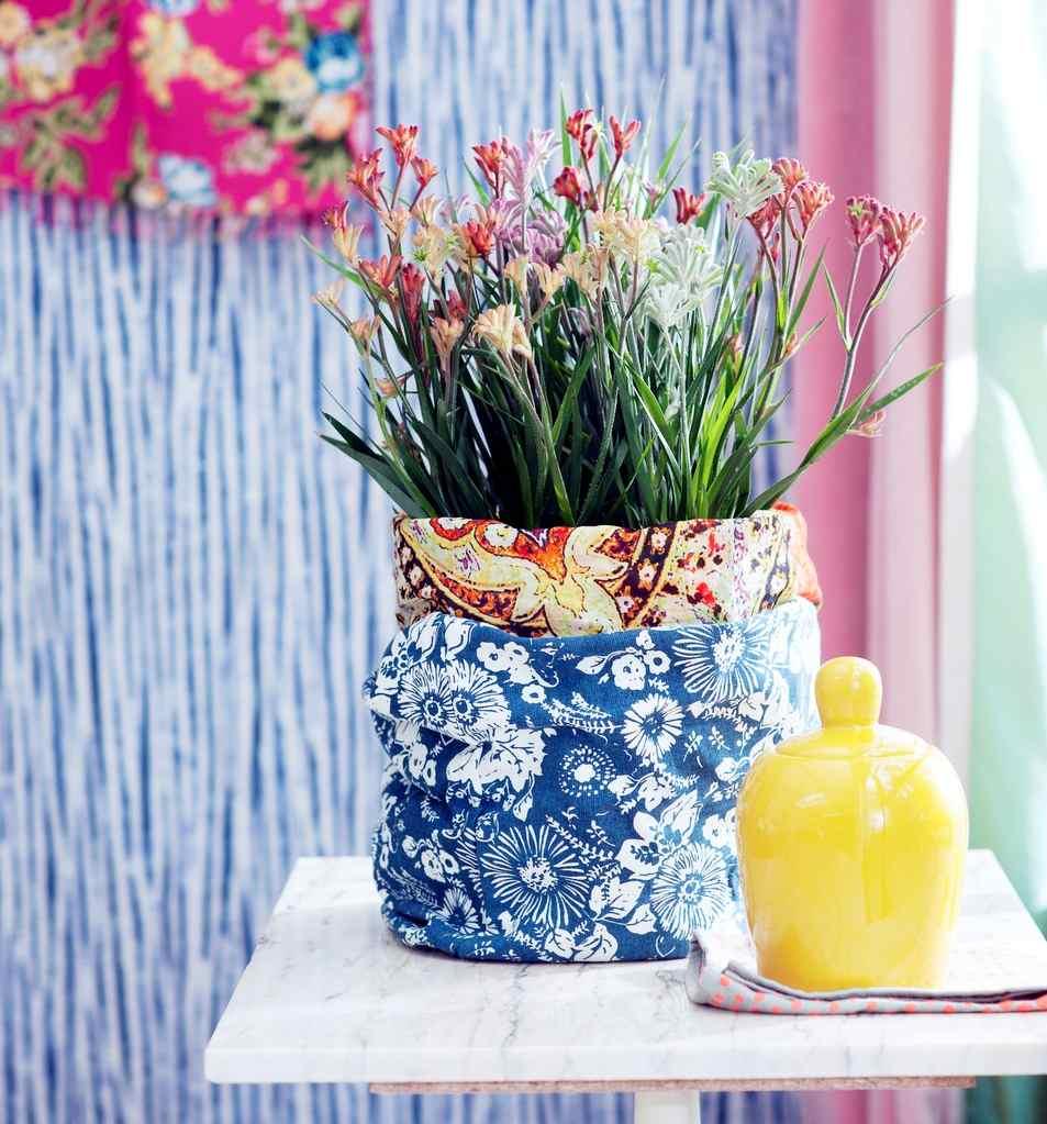 Anigozanthos plantes exotiques du mois de mai