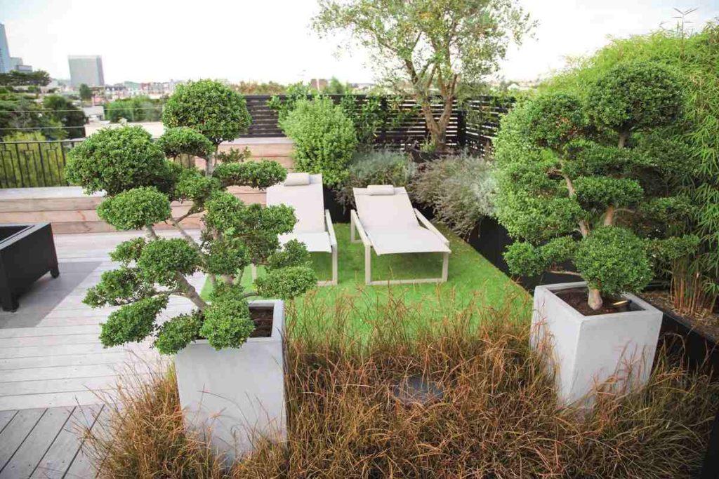 terrasse didier danet