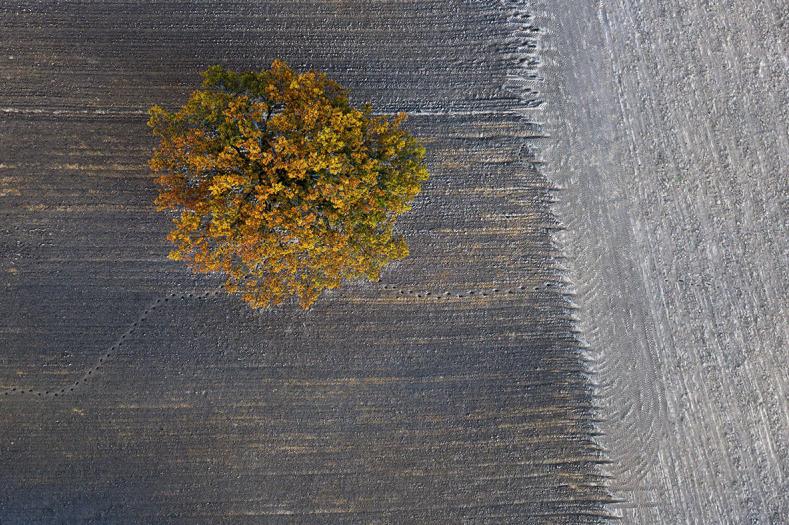 Autumn#11 © Kacper Kowalski