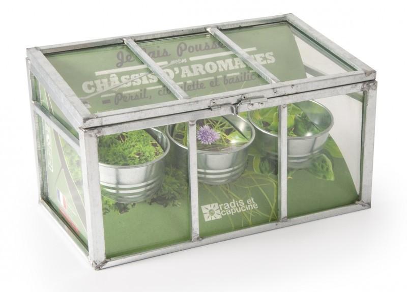 Châssis plantation trio aromatiques bio, Nature & Découvertes