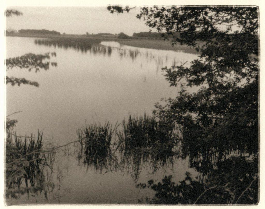 Robert Charles Mann, Paysage