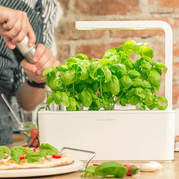 The Smart Garden, Click and Grow