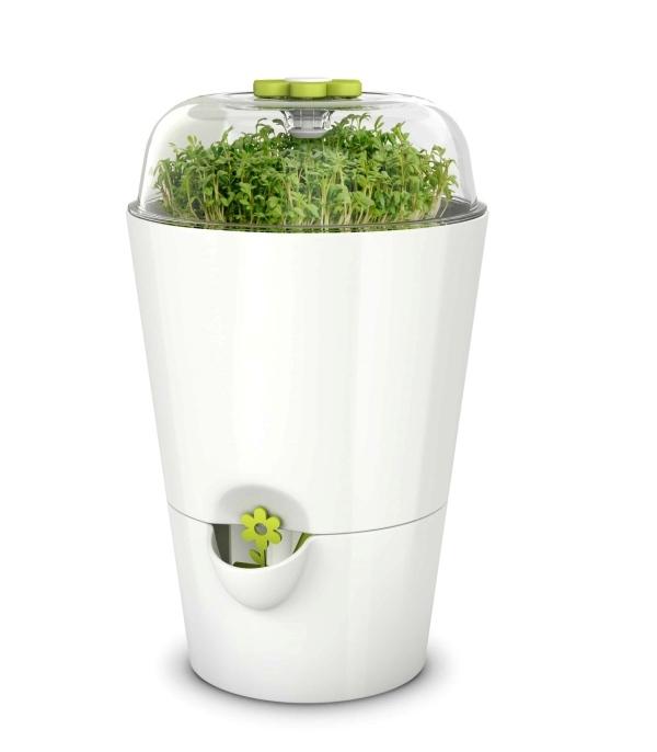 Pots à herbes Fresh Herbs, Emsa