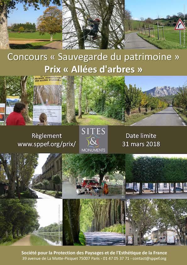 """Affiche du concours """"Allées d'arbres"""", édition 2018"""