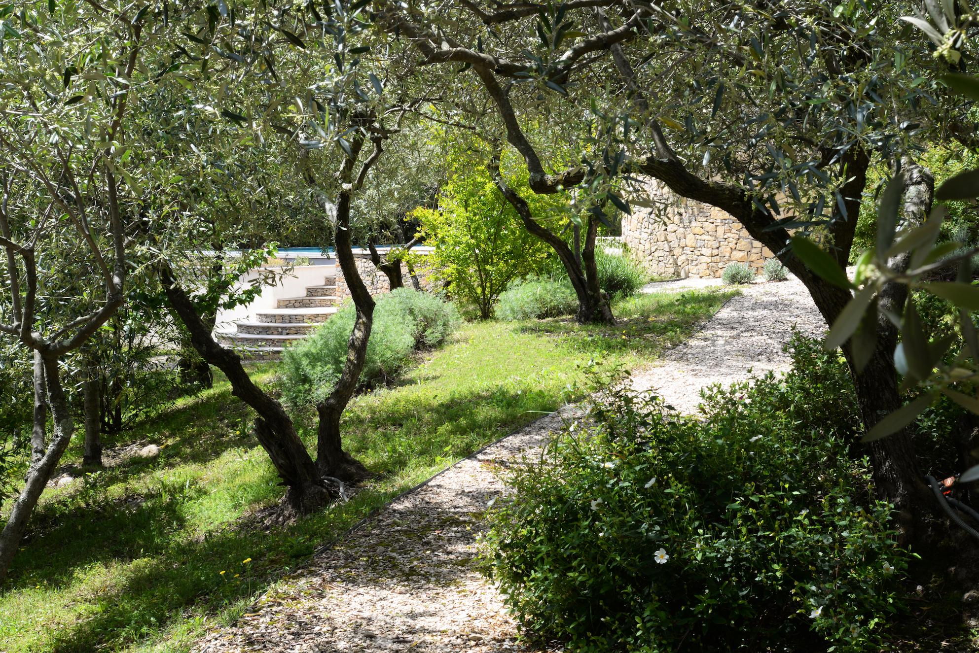 Une allée du jardin; Frédéric Trifilio, Jardin des Arcades